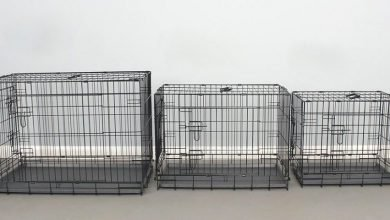dog crate sizes