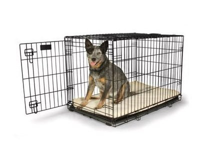petco crates for dogs are safe secure and affordable they are already assembled when received you just have to set it up in the desired place