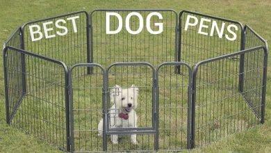 dog playpens