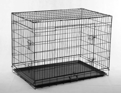 enclosed dog kennels