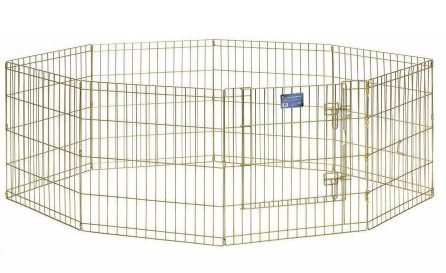 dog pen indoor