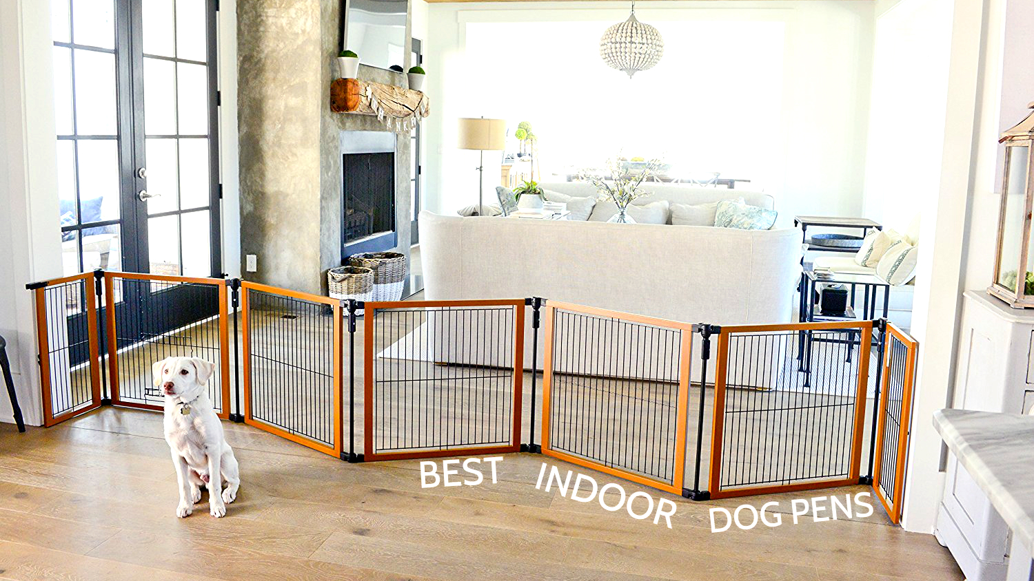 Best Indoor Dog Pens