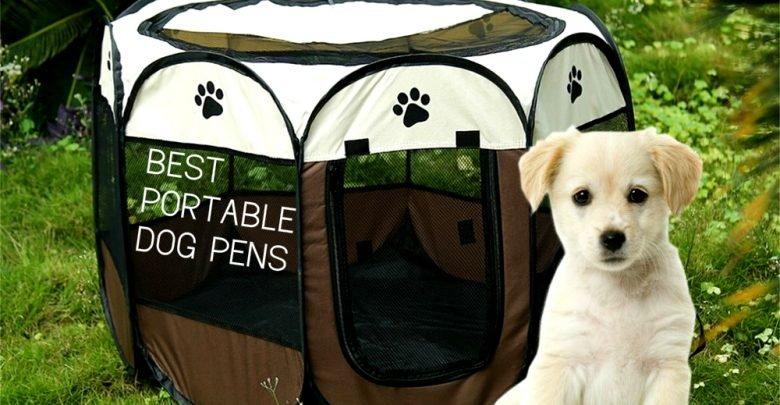 portable dog pens