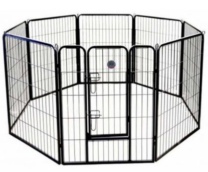 cages for dogs