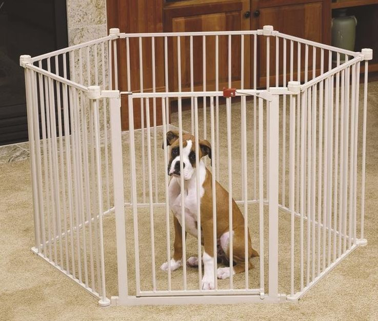 small dog playpen