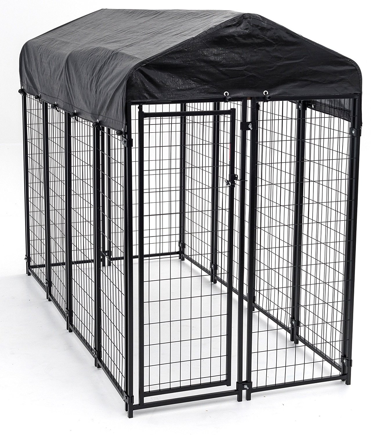chain link kennel