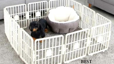 best small dog and puppy playpens