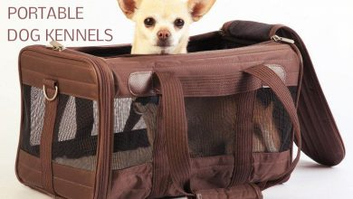 portable travel dog kennels